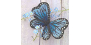 Бабочка: мастер-класс по валянию с тонировкой и нанесением рисунка